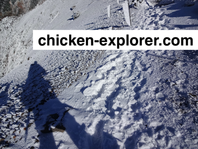chicken-explorer.com 画像
