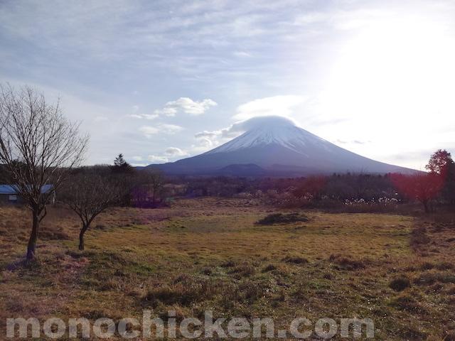 山と旅から見えたエネルギーとスズメ 画像